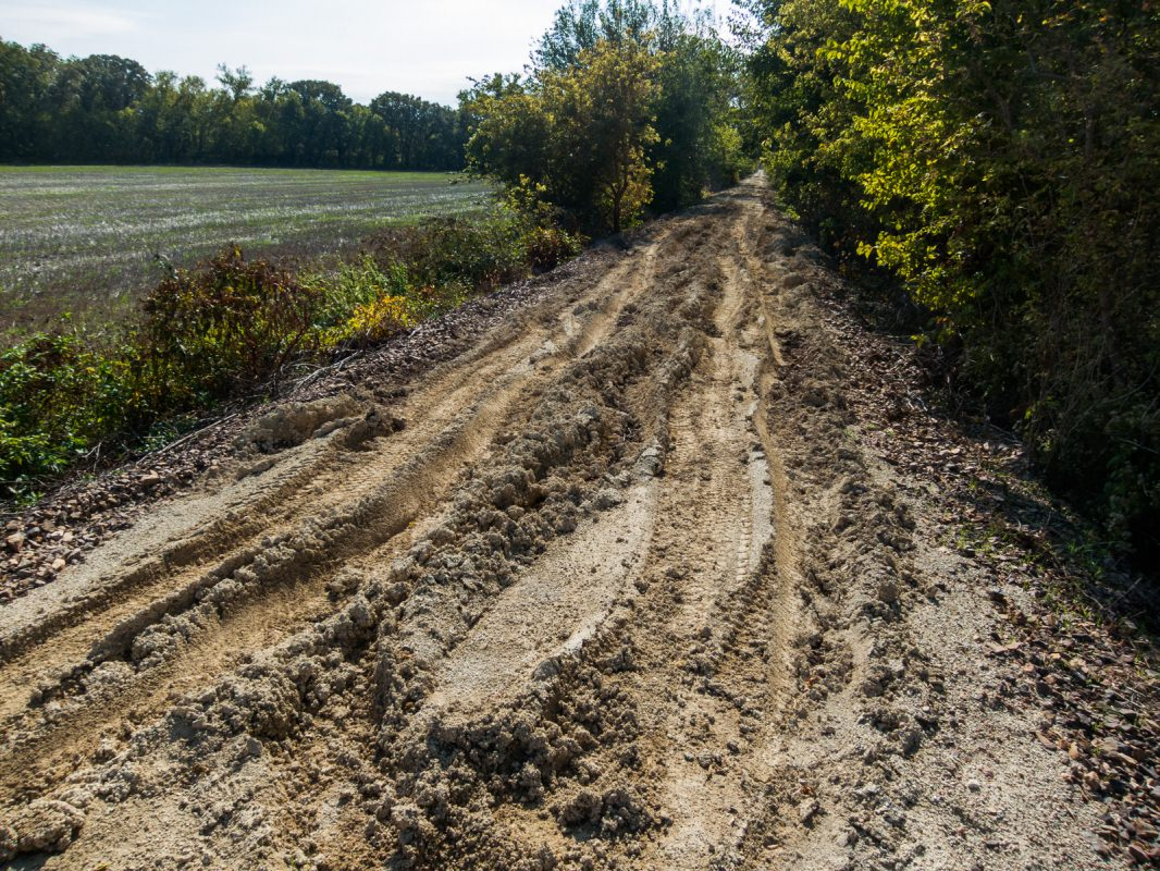 Meadowlark Trail: deep ruts