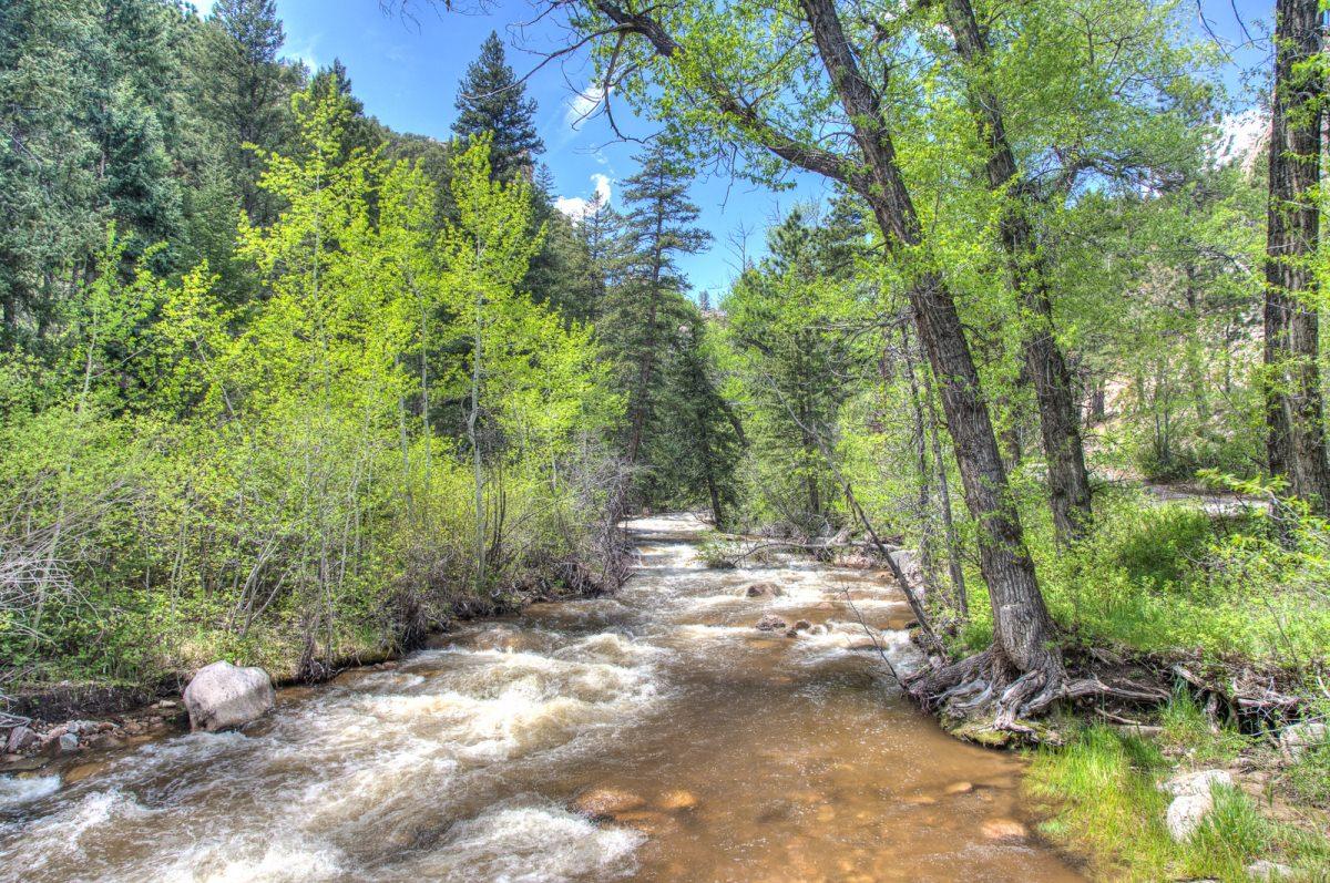 Estes Park Trip June 2015