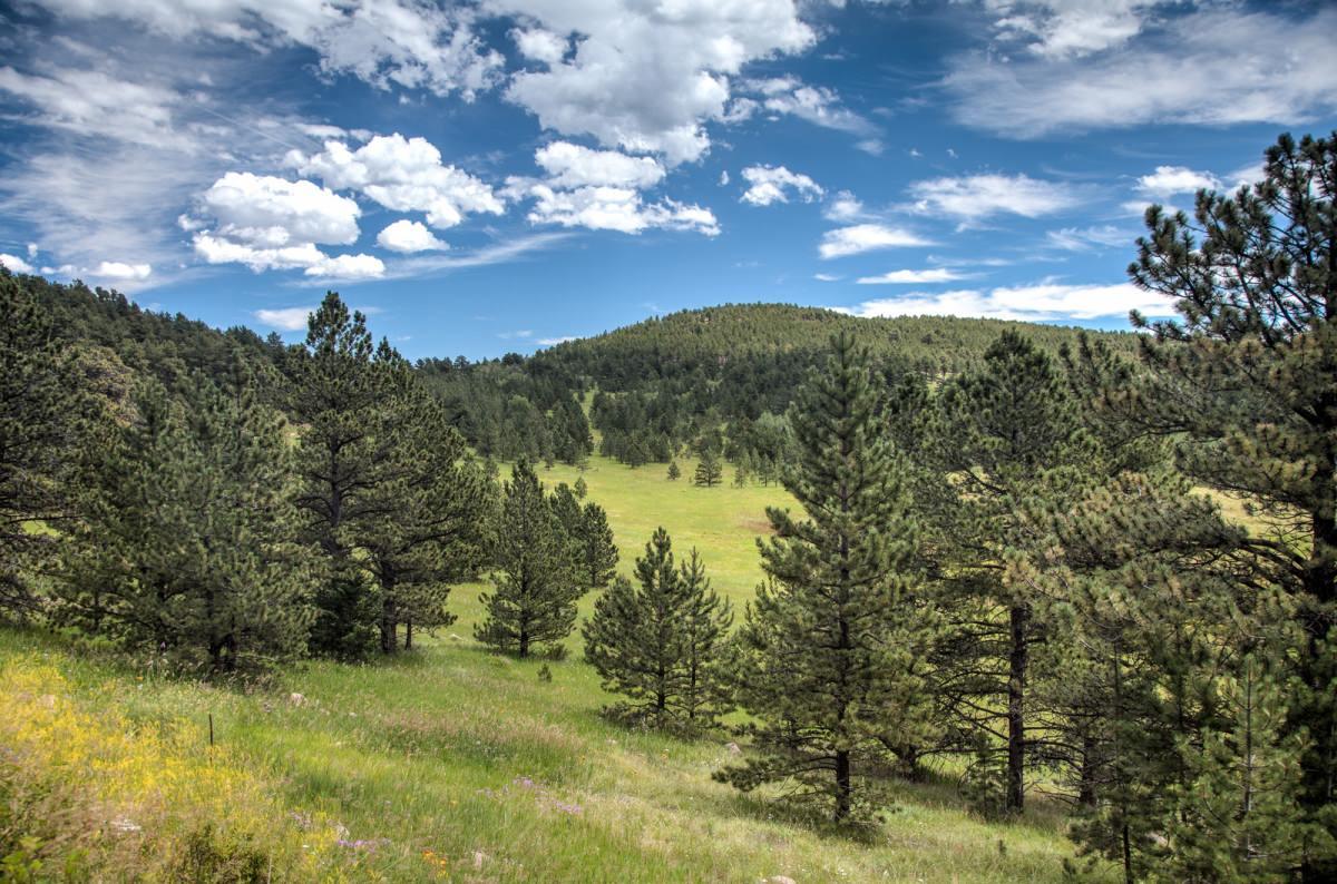 Scenes Near Boulder