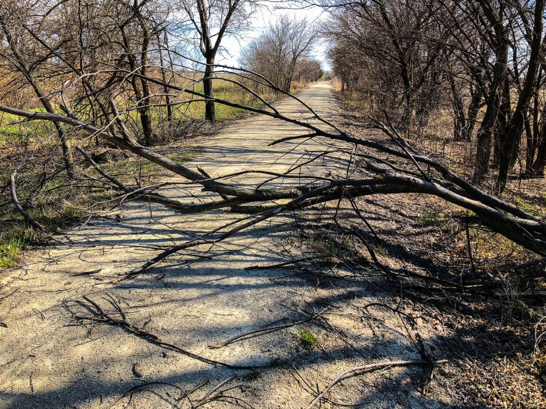 Meadowlark Trail - Blocked by Trees