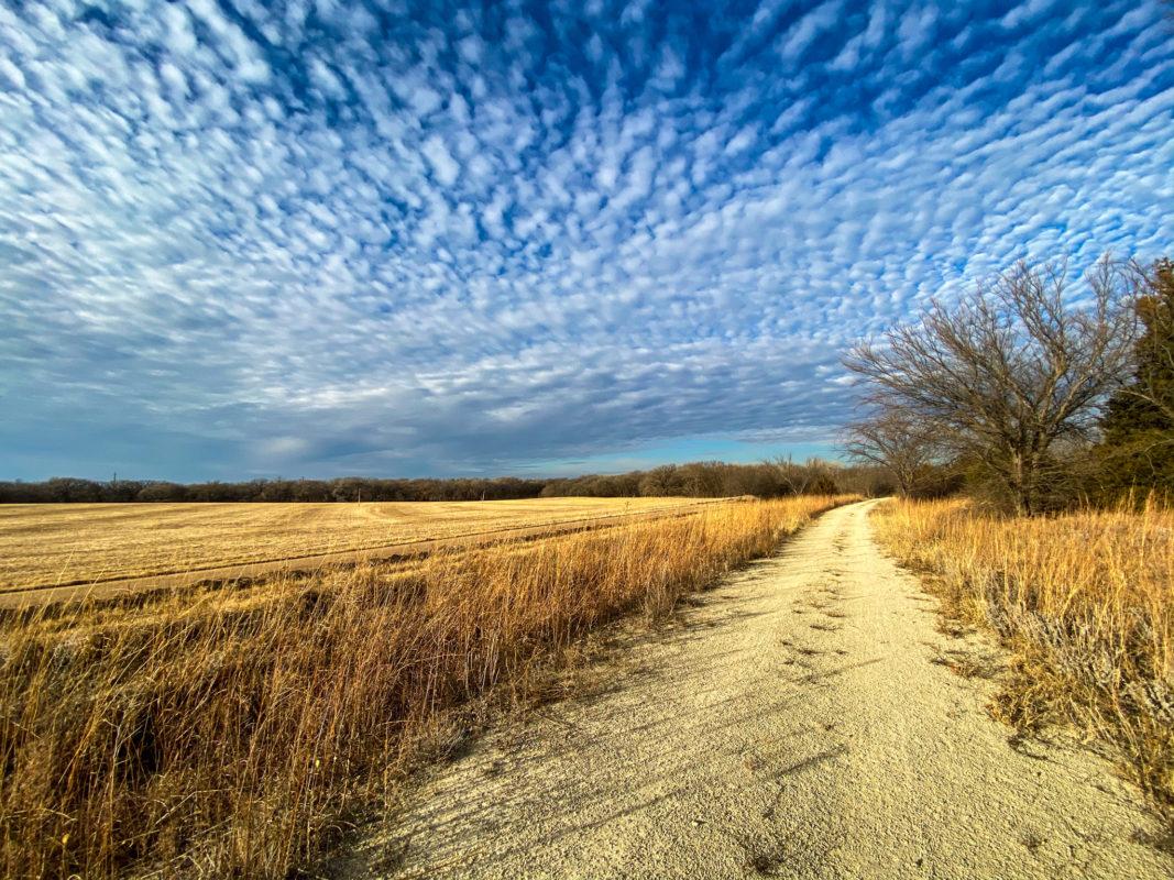 Meadowlark Trail, looking north