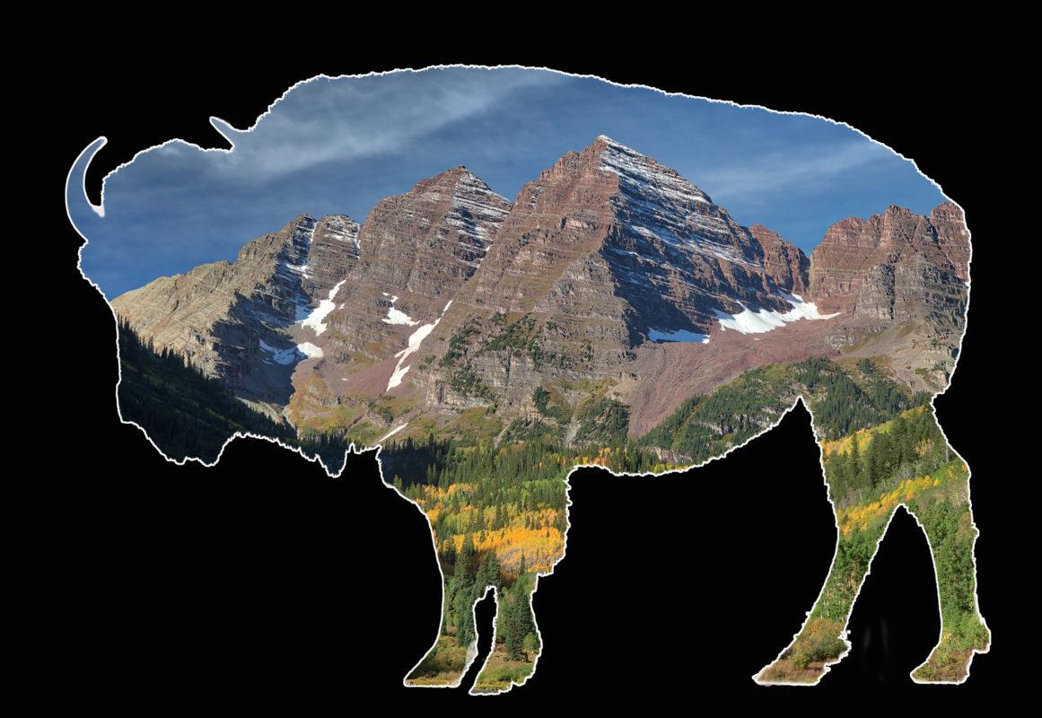 Bison Views -- Maroon Bells